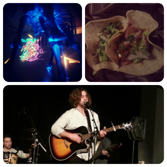 gourmet gringos, cai.ro, friday night live, rom, royal ontario museum, light, dinosaurs, tacos, gluten free, toronto, band, live, performance, photos, rom, fnlrom, review