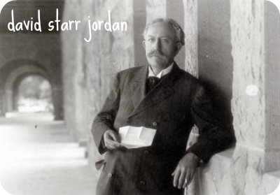 ds_jordan