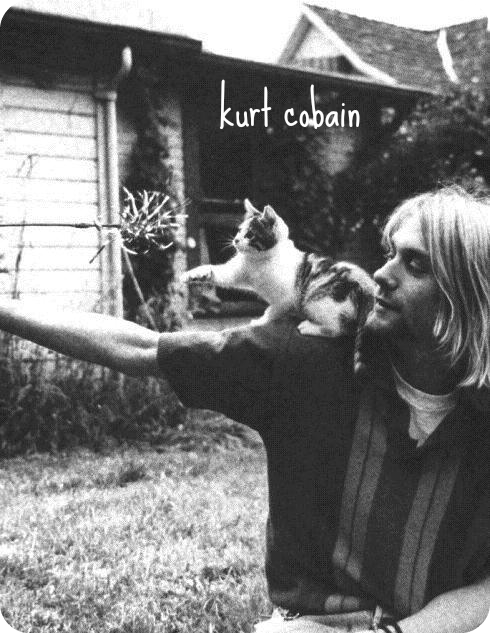 Kurt Cobain Punk is musical freedom. It's saying, doing and playing what you want. In Webster's terms, 'nirvana' means freedom from pain, suffering and the external world, and that's pretty close to my definition of Punk Rock.